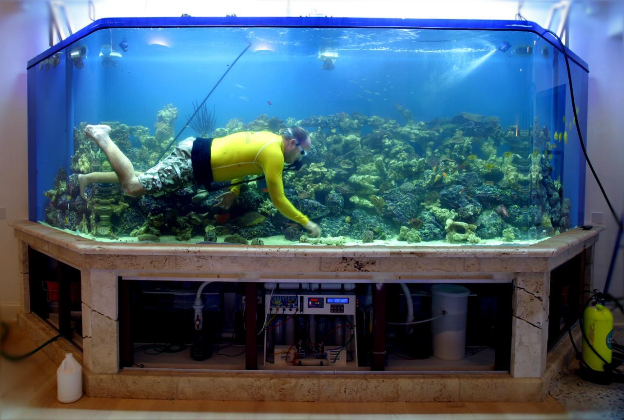 Как правильно приготовить аквариум