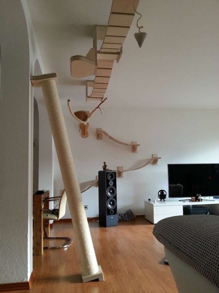 Для кошек домики на потолке