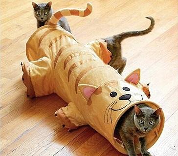 Самодельная игрушка для кошки своими руками